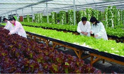 农业经济管理